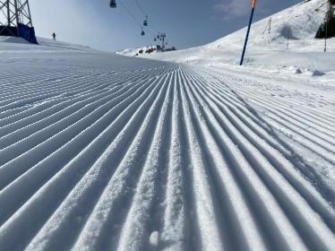 Gemeinsamer Spass im Schnee