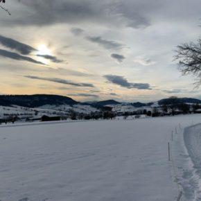 Schnee auf LSZI 2021